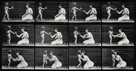 muybridge_bouquet