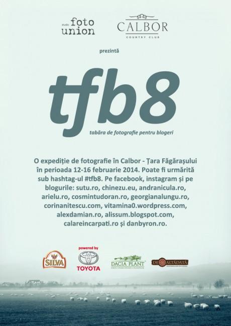 afis-TFB8-bun1