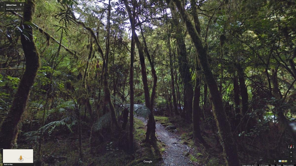 Milford Track Noua Zeelanda